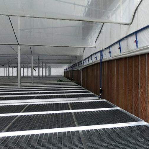 苗床架 育苗温室花卉育苗大棚苗床架-广州市煌城温室工程有限公司蔬菜大棚育苗大棚温室工程